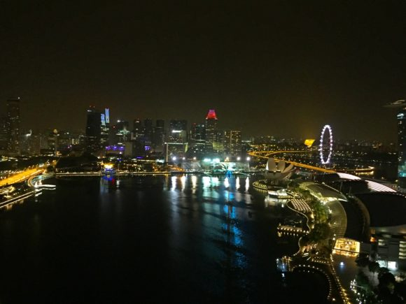marina-bay-at-night-singapore-dyandra-raye