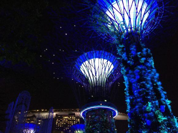 super-trees-gardens-by-the-bay-dyandra-raye