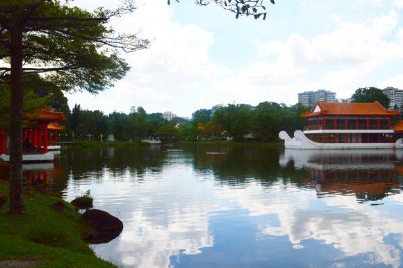 tree-walk-singapore-dyandra-raye